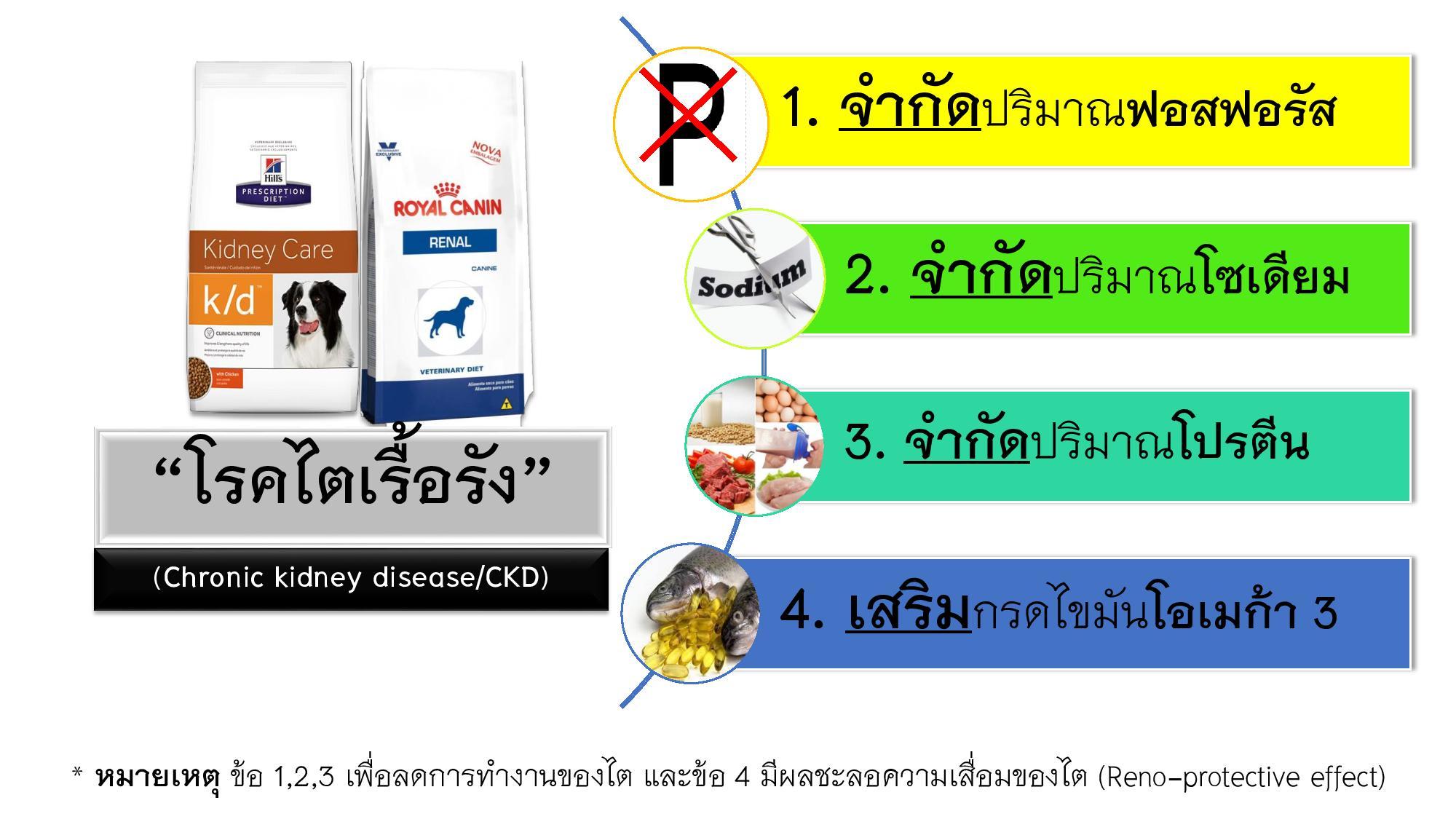 Diet Management-002