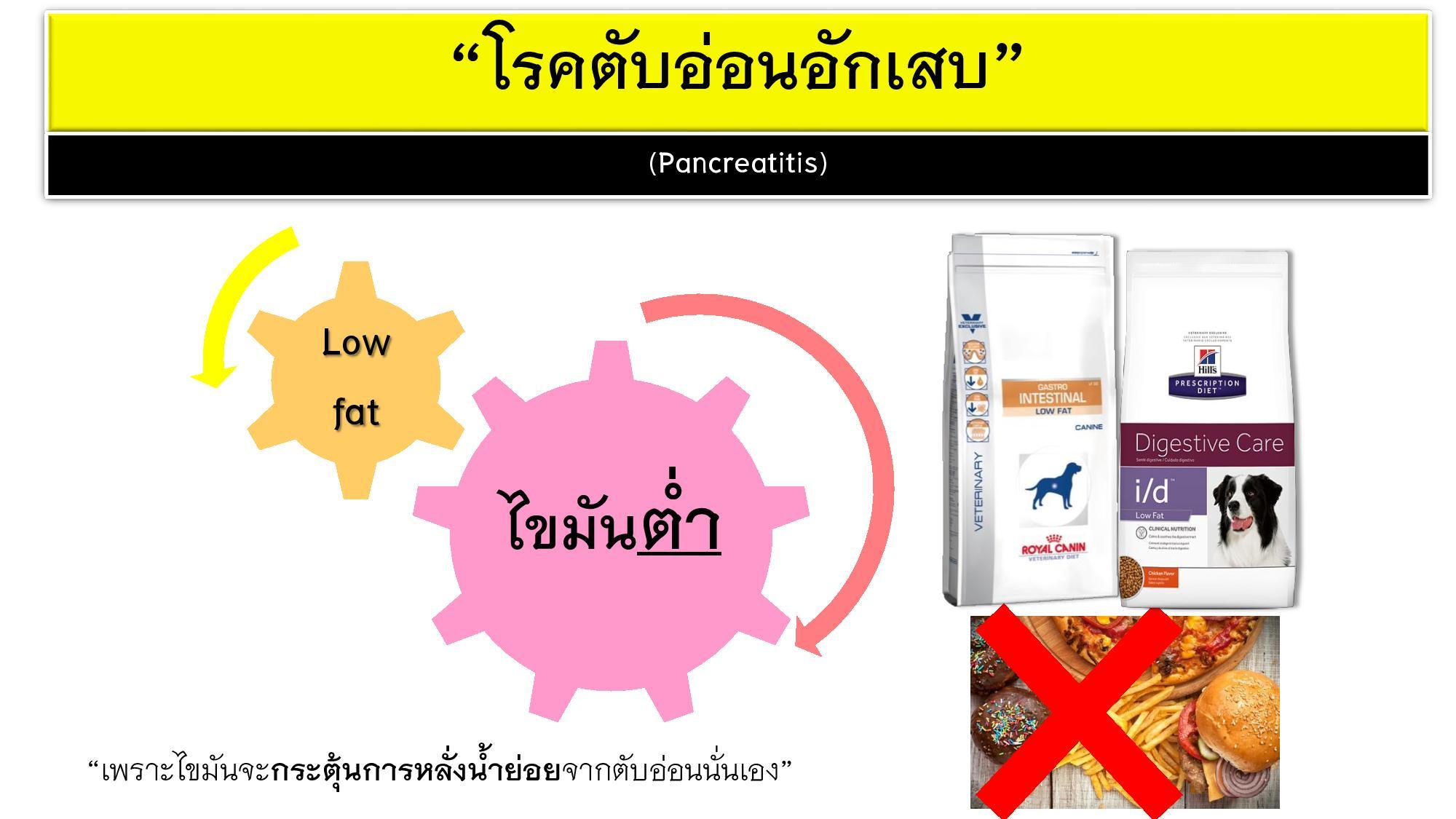 Diet Management-003